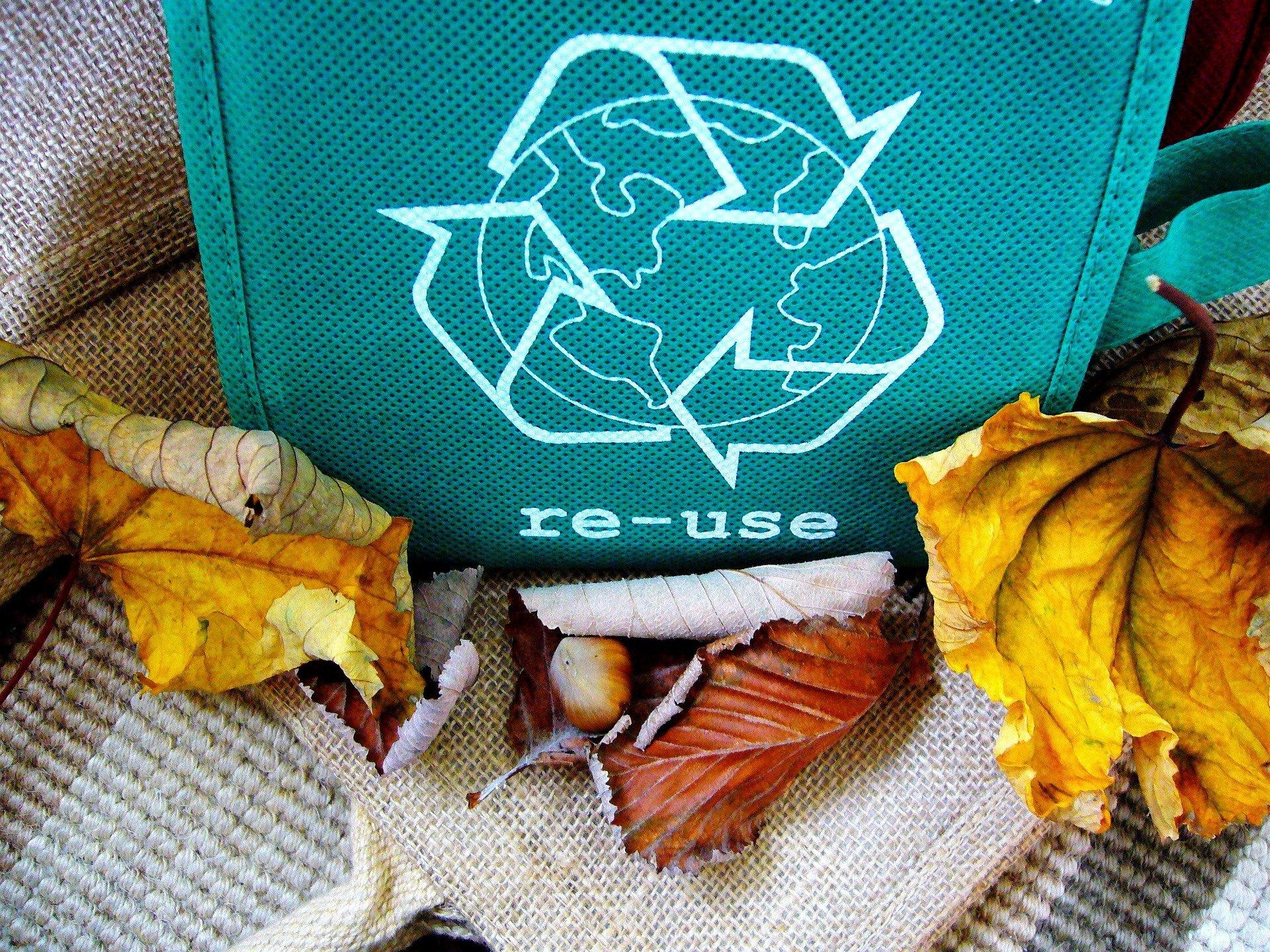 Jak segregować odpady