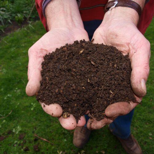 Kompost do nawożenia