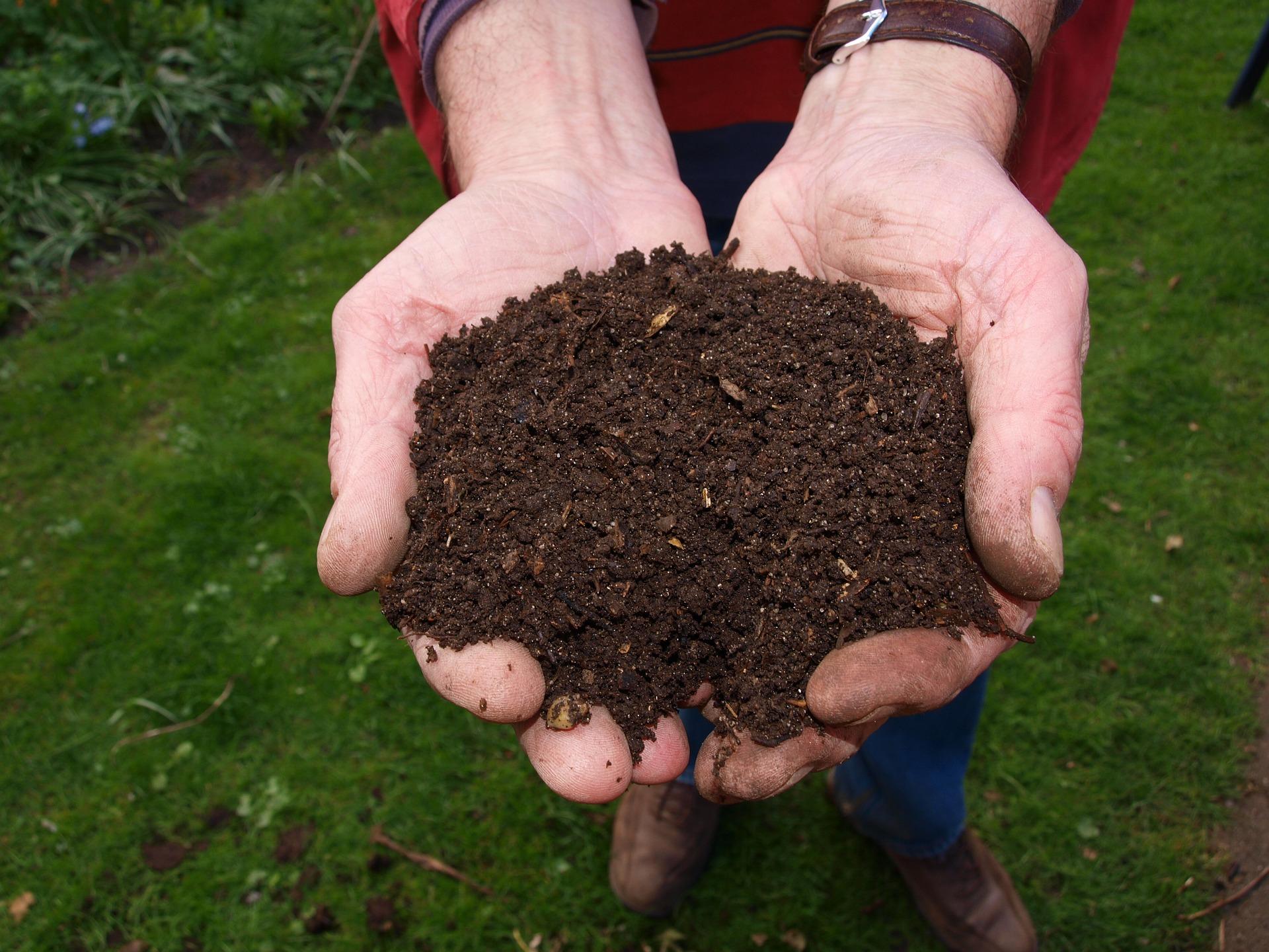 Jak zrobić kompost – oto najprostszy sposób, z którym poradzi sobie każdy